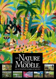 La nature comme modèle pour une intensification écologique - Cirad