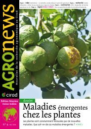 Agronews Réunion-océan Indien n°4, mai 2011 - Cirad