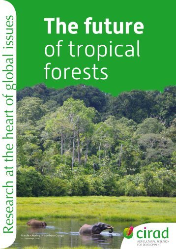 The future of tropical forests - Cirad