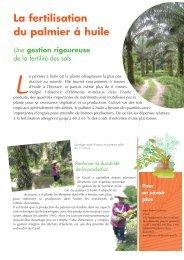 La fertilisation du palmier à huile - Cirad