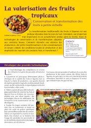 Valorisation_fruits_tropicaux - Cirad