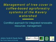 Management of tree cover in coffee-based agroforestry ... - Cirad
