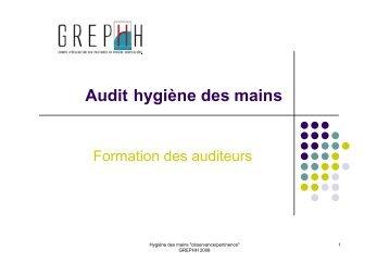 Audit hygiène des mains - CClin Sud-Est