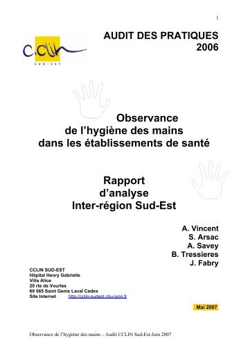 Observance de l'hygiène des mains dans les ... - CClin Sud-Est