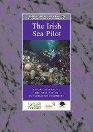 The Irish Sea Pilot final report - JNCC - Defra