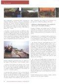 Bulletin d'information du Cedre N°5 - Page 6