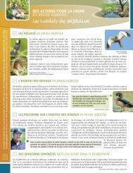 Les habitats des oiseaux - Fondation de la faune du Québec