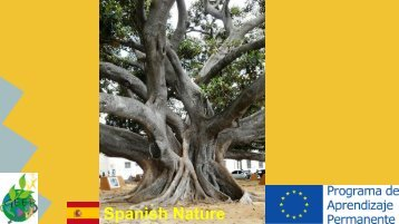Spanish Nature
