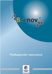 Plaquette Beenov - (CCI) de Montauban