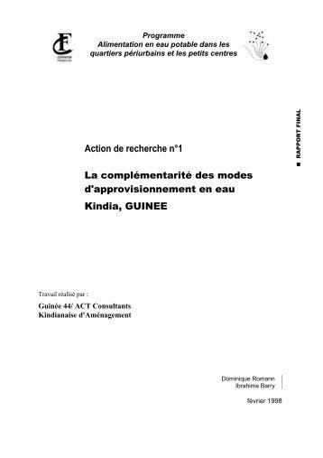 la SONEG, société de patrimoine propriétaire du réseau