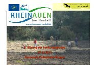 3. Sitzung der Lenkungsgruppe 07.12.2012 Gemeinde Elchesheim ...