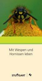 Hornissen und Wespen (PDF - 632 KB) - Stuttgart