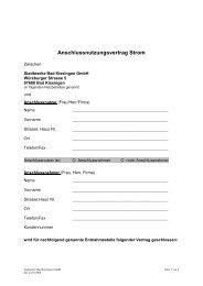 Anschlussnutzungsvertrag Strom - Stadtwerke Bad Kissingen