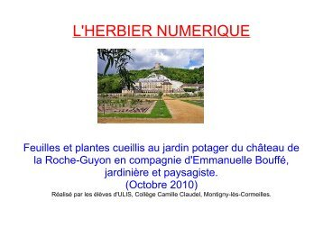 L'HERBIER NUMERIQUE - Collège CAMILLE CLAUDEL