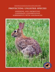 Download the PDF - Defenders of Wildlife