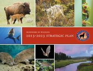 2013-2023 Strategic Plan - Defenders of Wildlife