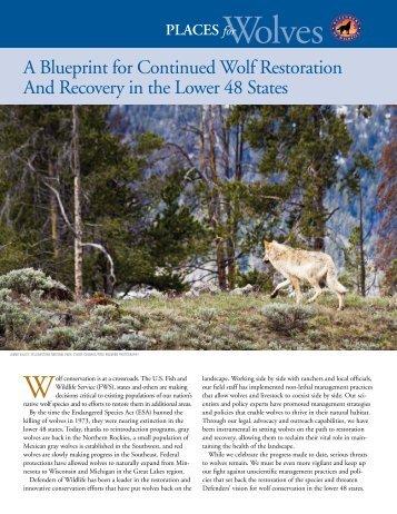 Download the PDF - Defenders of Wildlife