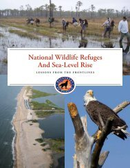 National Wildlife Refuges And Sea-Level Rise - Defenders of Wildlife