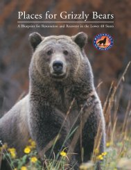 A Place for Grizzlies - Defenders of Wildlife