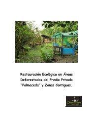 """""""Palmaceda"""" y Zonas Contiguas. - Tu patrocinio"""