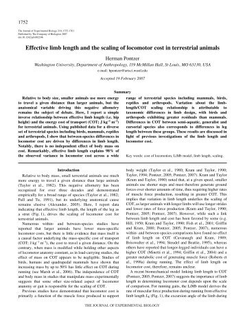 2007 Pontzer, H. Limb length and the scaling of locomotor cost in ...