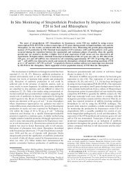 In Situ Monitoring of Streptothricin Production by Streptomyces ...