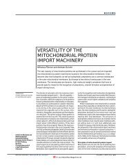 versatility of the mitochondrial protein import machinery - IMBB