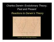 Reactions to Darwin's Theory Charles Darwin: Evolutionary Theory ...