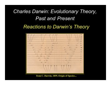 Reactions to Darwin's Theory Charles Darwin: Evolutionary Theory ...
