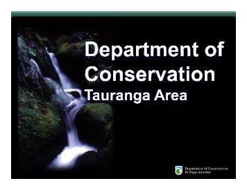 The Tauranga team
