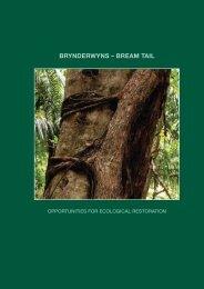 brynderwyns – bream tail - Landcare Trust