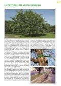 """Brochure """"Strumenti per il governo del territorio"""" - Io sono - Page 7"""