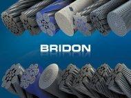 Bridon - Jeferson Leite - Subsea UK