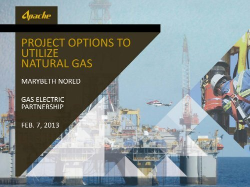 Project Options to Utilize Natural Gas - Gas/Electric Partnership