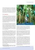 Von der Staude bis zum Konsumenten - Fair Trade - Seite 7