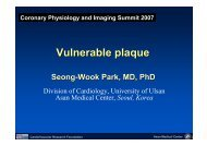 Vulnerable plaque - summitMD.com