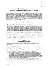 5. B1_Hundesteuersatzung2005-2011_04.pdf - Sundern