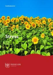 Pjece: Stress - Sundhed.dk