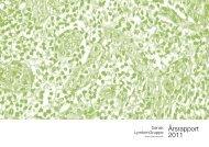 Årsrapport 2011 - Lymphoma | Velkommen til DLGs hjemmeside