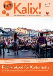 InfoKalix! nr2 2014