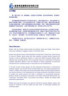 Bossen INTERNATIONAL HOLDING  - Page 2