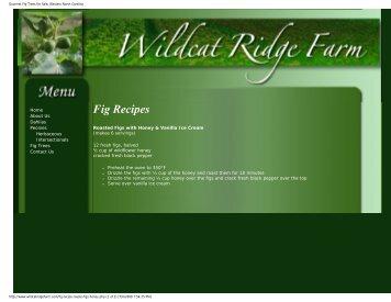 Gourmet Fig Trees for Sale, Western North Carolina - Figs 4 Fun