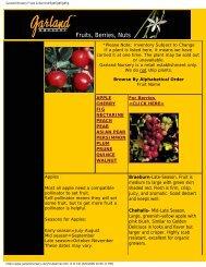 Garland Nursery Fruits & Berries#fig#fig#fig#fig - Figs 4 Fun