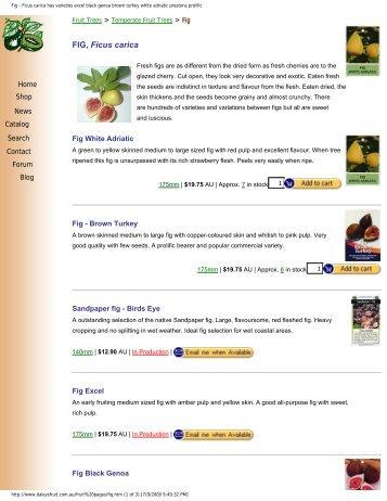 Fig - Ficus carica has varieties excel black genoa brown ... - Figs 4 Fun