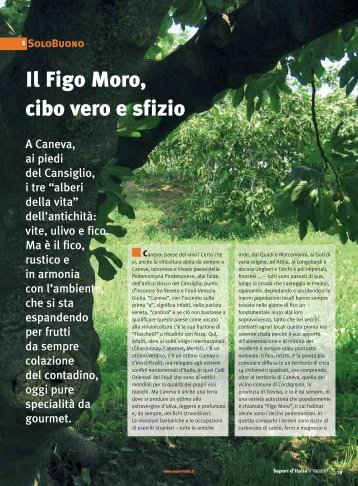 Il Figo Moro, cibo vero e sfizio - Figs 4 Fun