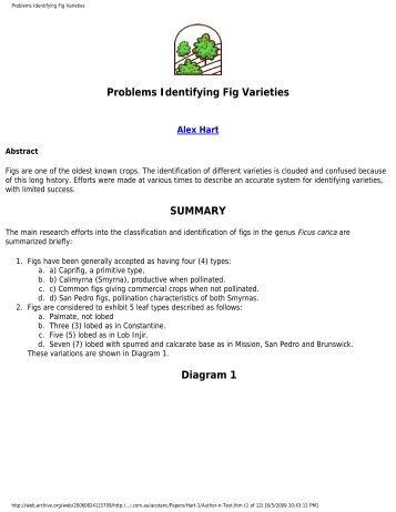 Problems Identifying Fig Varieties - Figs 4 Fun