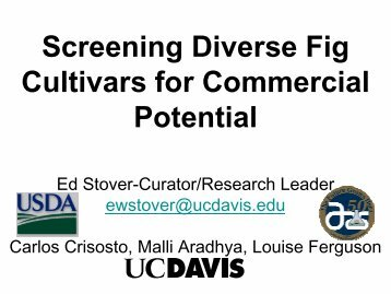 Screening Diverse Fig Cultivars for Commercial ... - uri=ucce.ucdavis