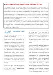 Animali 5 - Liceo Classico Psicopedagogico Cesare Valgimigli