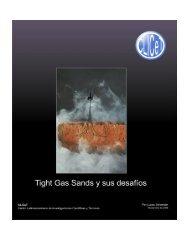 Tight Gas Sands y sus desafíos - OilProduction.net