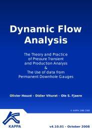 Dynamic Flow Analysis